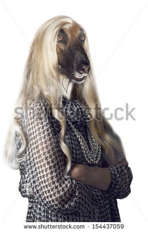 Senior woman with dog's head and long hair - stock photo