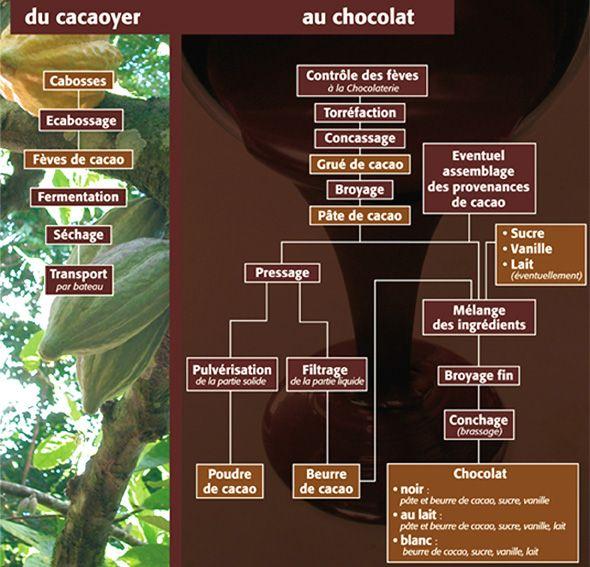 Fabrication du chocolat | Cacao | Pinterest | Fabrication ...