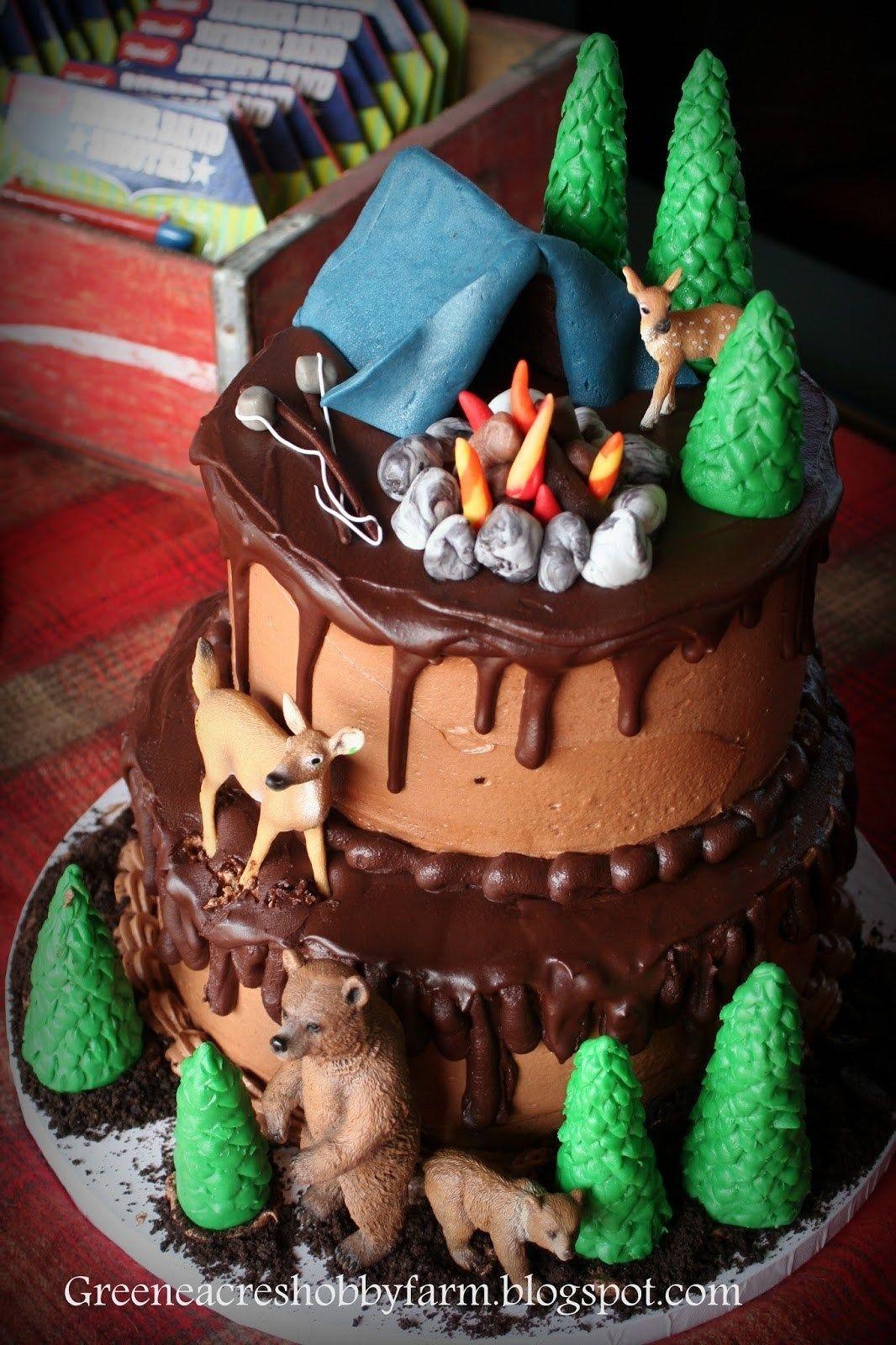 Astounding 25 Creative Photo Of Camping Birthday Cake Countrydirectory Birthday Cards Printable Opercafe Filternl