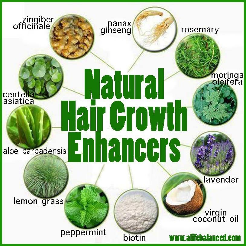15 Powerful Home Remedies For Hair Growth That Work Wonders ...
