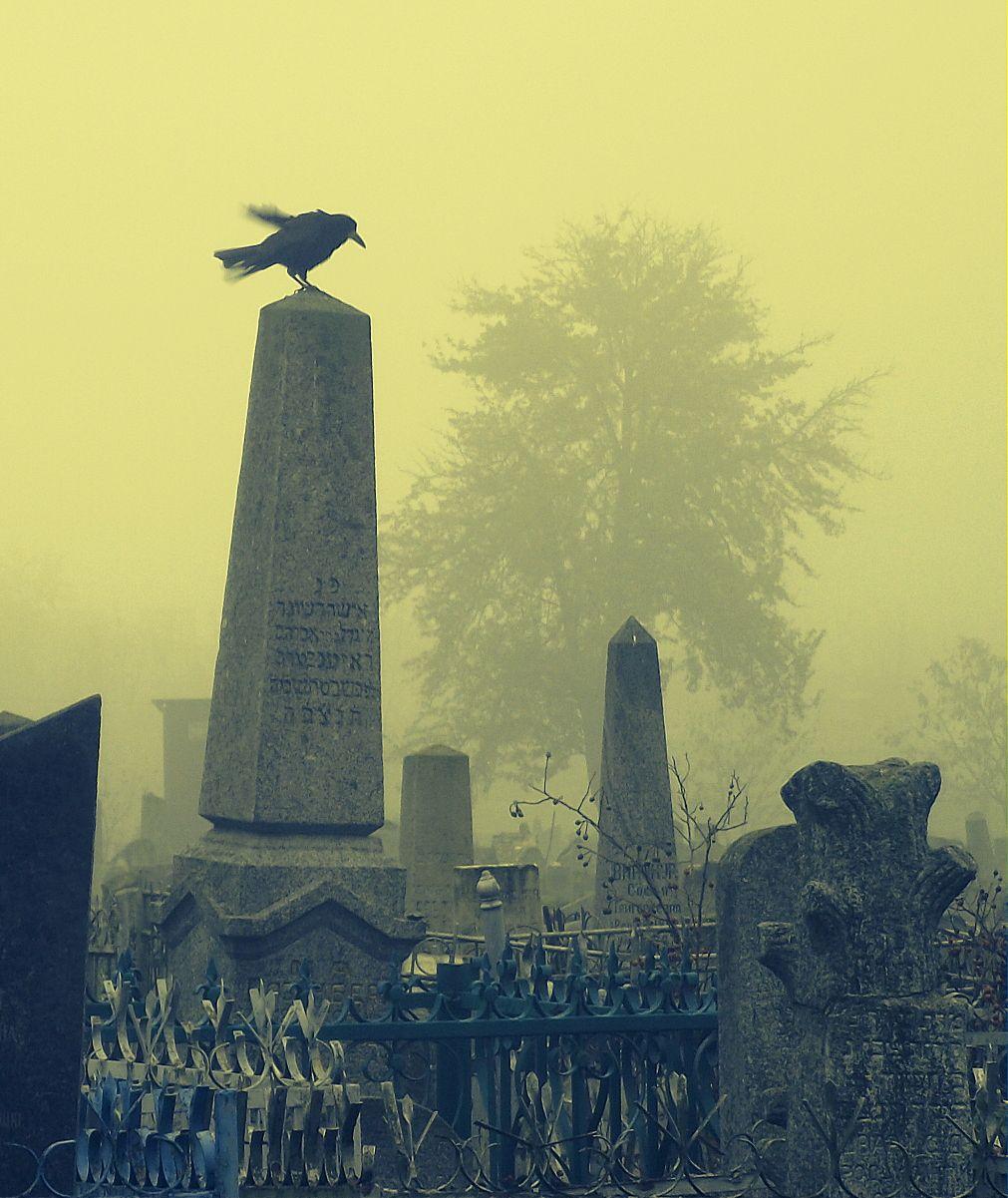 Бердичев. Старое еврейское кладбище