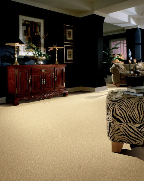 Dark bedroom walls with cream colored carpet | Carpet | Pinterest ...