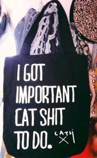 Cat shit