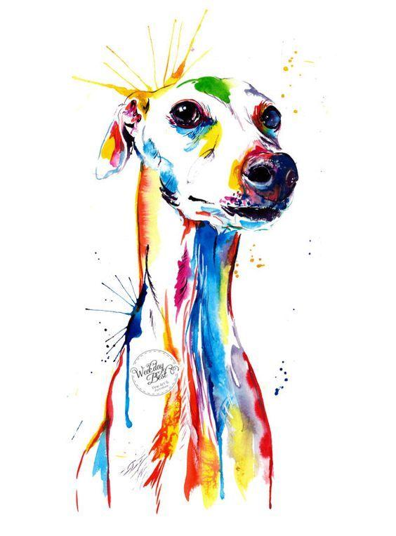 Art Prints Colorful Pet Portrait Pet Portrait Artist DawgArt Art Greyhound Pet Portrait Greyhound Art Dog Art Whippet