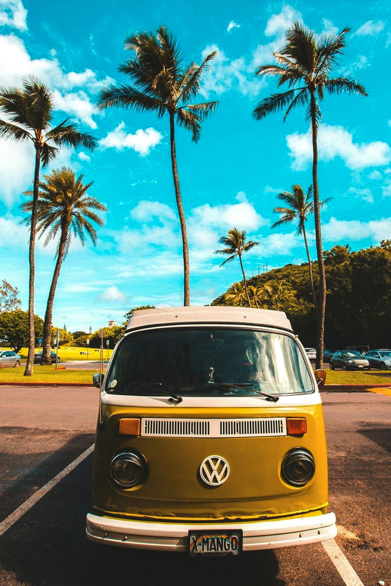 Charm Of Hippie Vw Camper Van Is Irresistible With Images