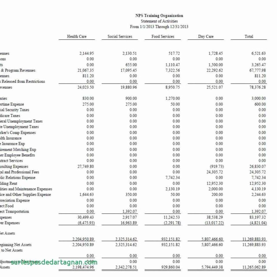 Non Profit Financial Statement Template in 2020