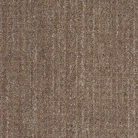 Pin On Shaw Anso Nylon Carpet