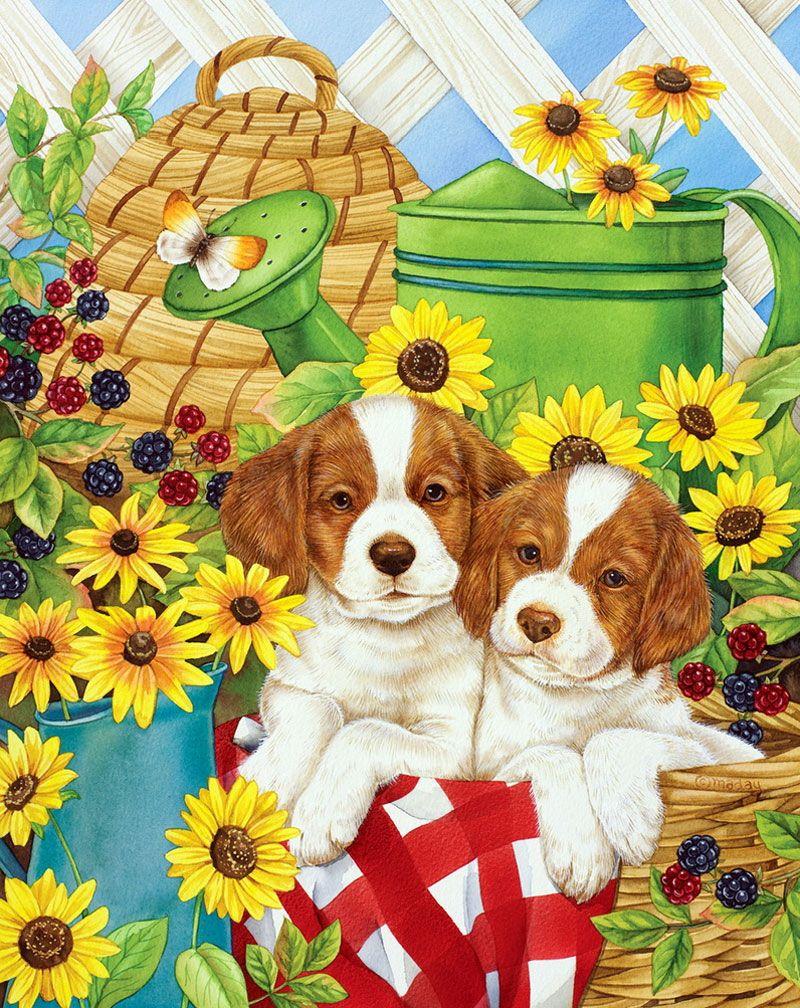 Открытки с изображением собак