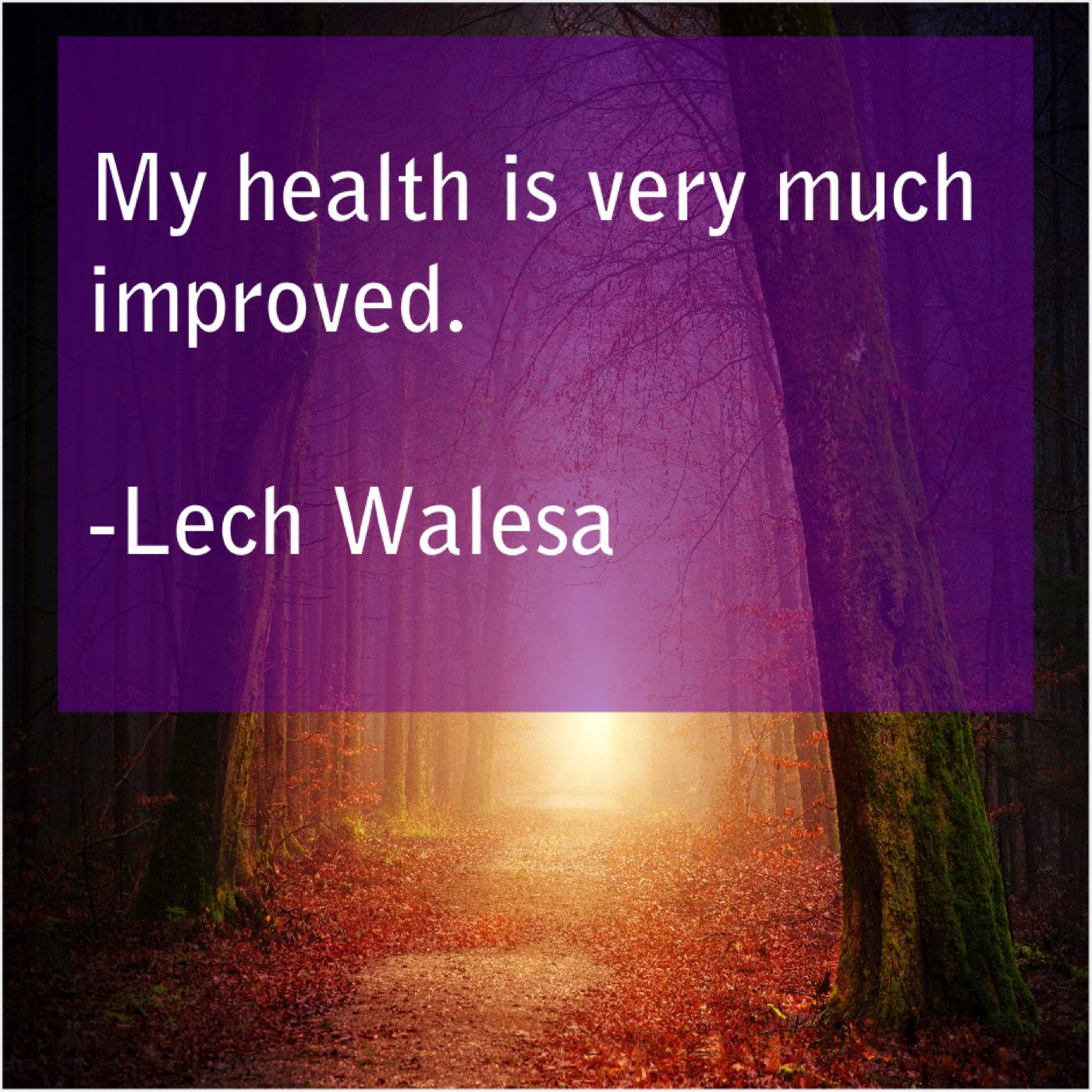 Lech Walesa My Health Is Very Much Lech Walesa Lech Health