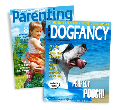 Magazine Covers login | fsdfds