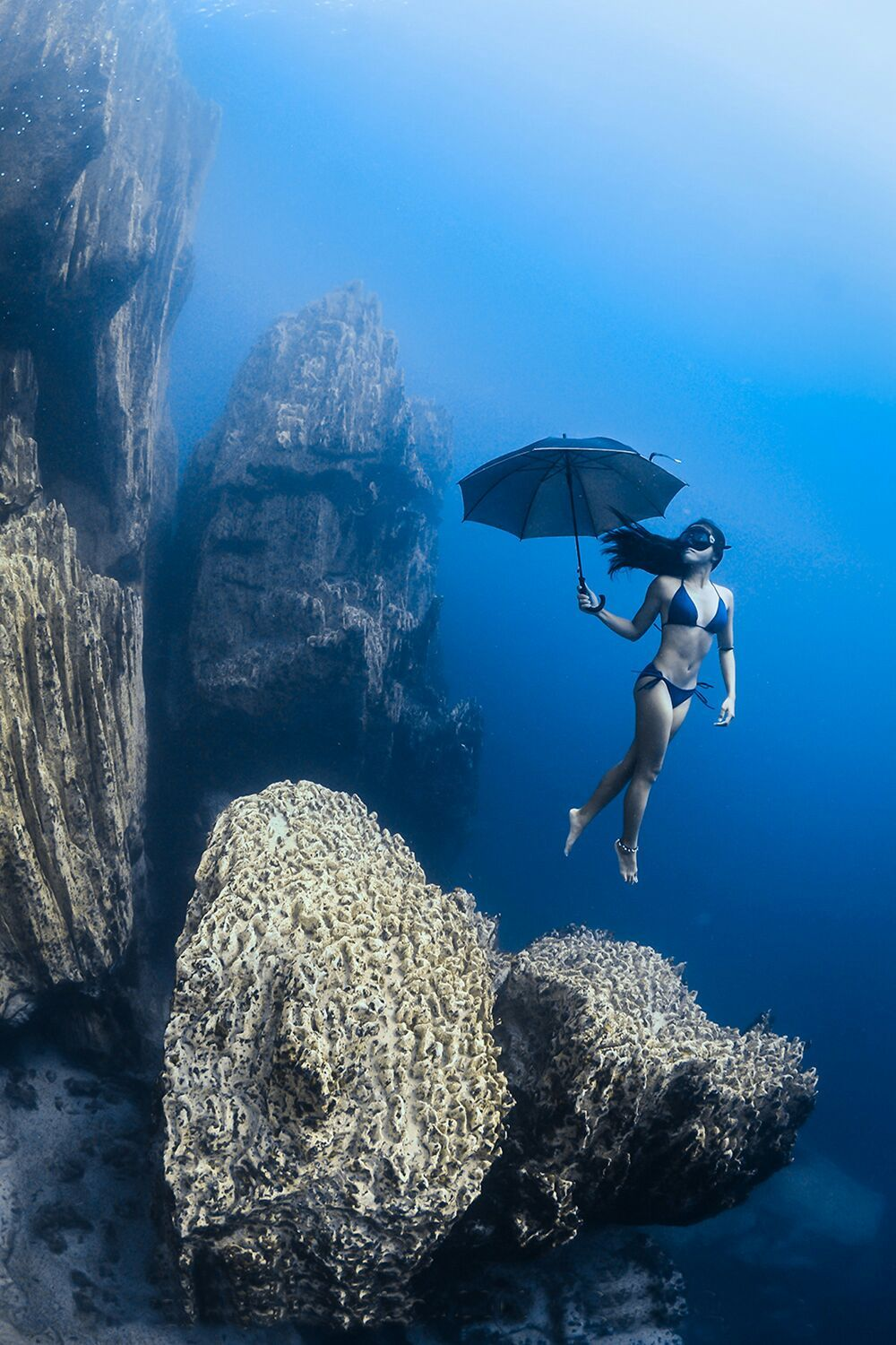 Pin By Michael Van Patten On Water Pinterest Underwater Pose - The best underwater photographs of 2016 are amazing
