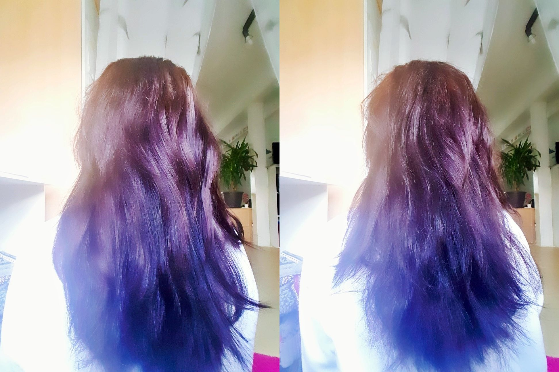 Halier Haarprodukte
