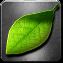 Download Fresh Leaves Apk for android phones