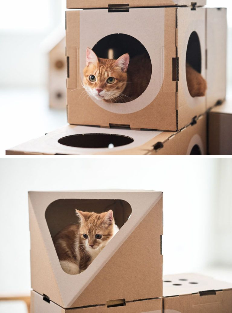 Pretty Cat Furniture A Cat Thing Have Created A Modular Cardboard Furniture Collection