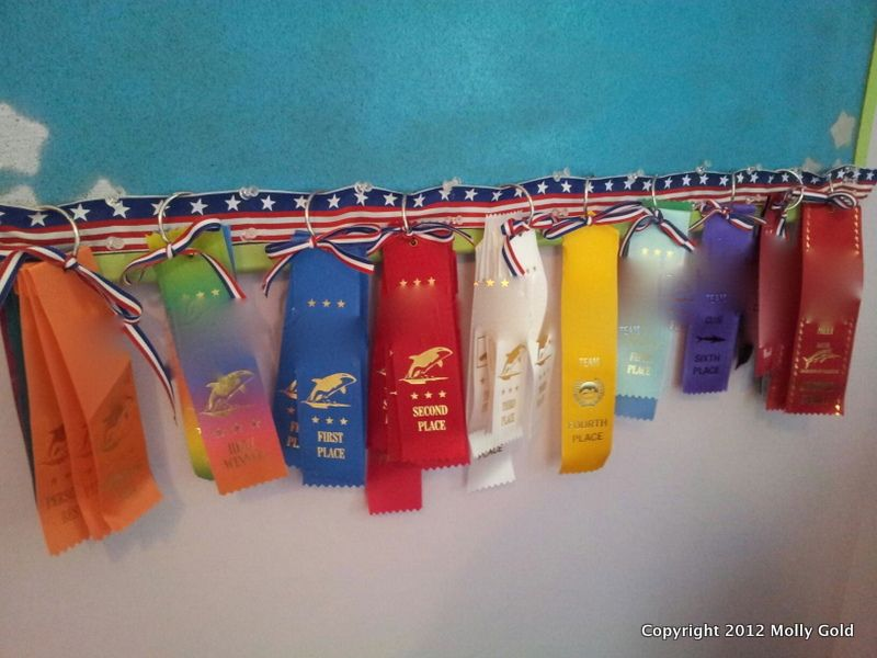 Display Swimming Ribbons Easy Craft For Swim Meet Race