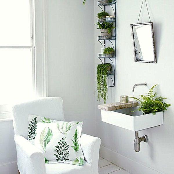 Pflanzen im Badezimmer sessel wurfkissen bathrooms Pinterest - bild für badezimmer