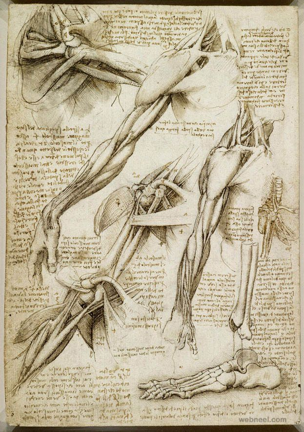 40 Most Famous Leonardo Da Vinci Paintings and Drawings | Pinterest ...