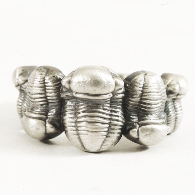 Extinct Sea Bug Fossil Trilobite Ring, Phacopida Trilobite Fossil, in 925 Sterling Silver, Family of 5, Men's Ring Size 11 (V5079) by Spoonier on Etsy