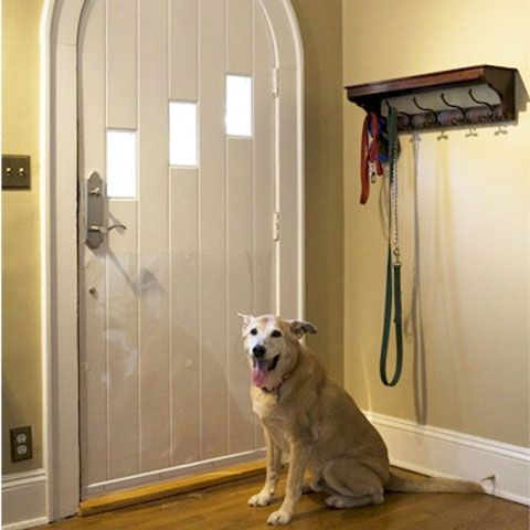Pet Door Shield Protector No More Scratch Marks Living With Pets