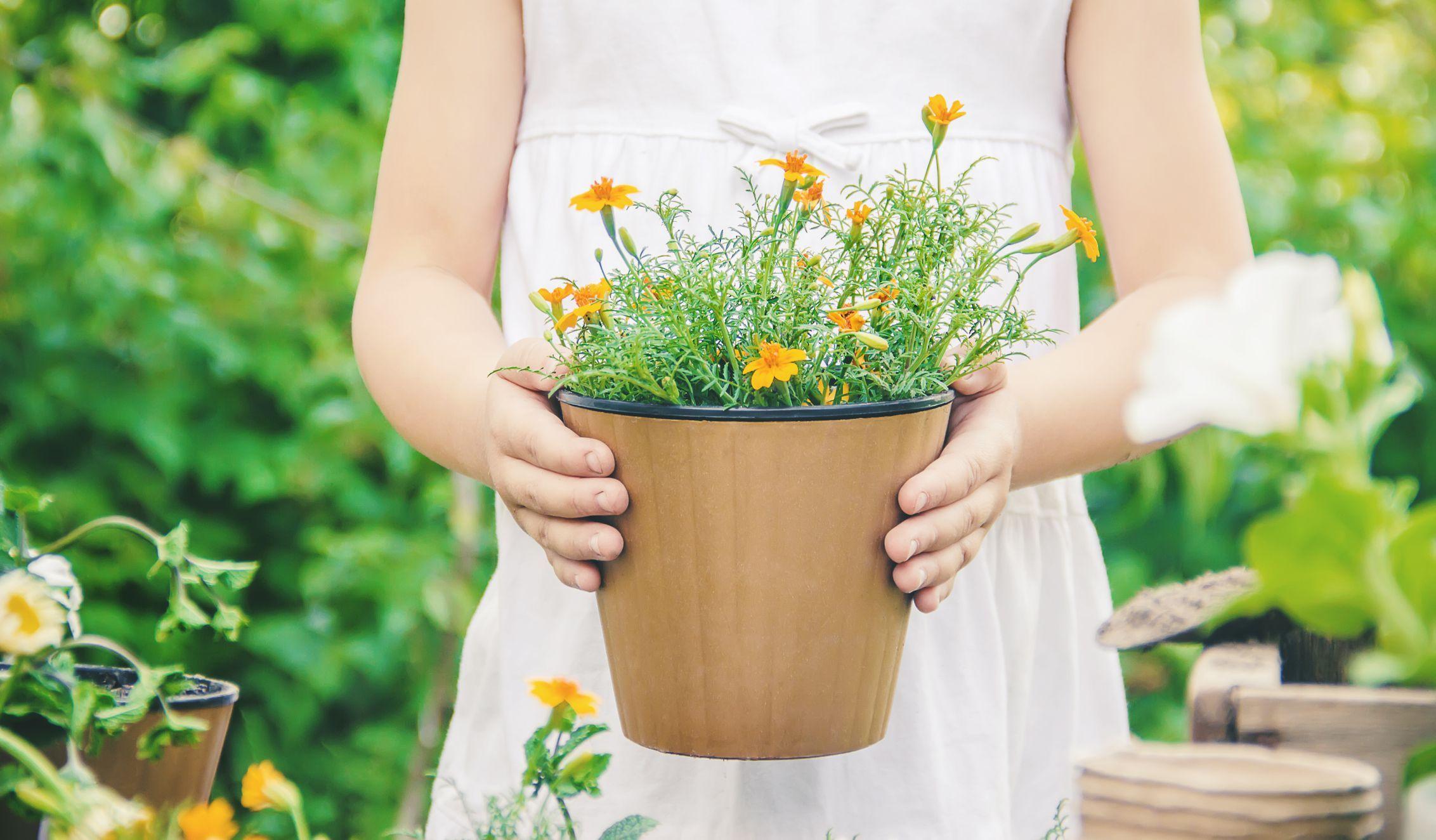 The 8 Best Self-Watering Planters of 2020 #selfwatering