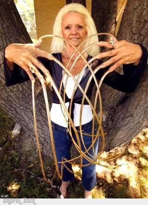 Insane Nails Lady Gagful Long Fingernails Long Nails Woman With Longest Nails