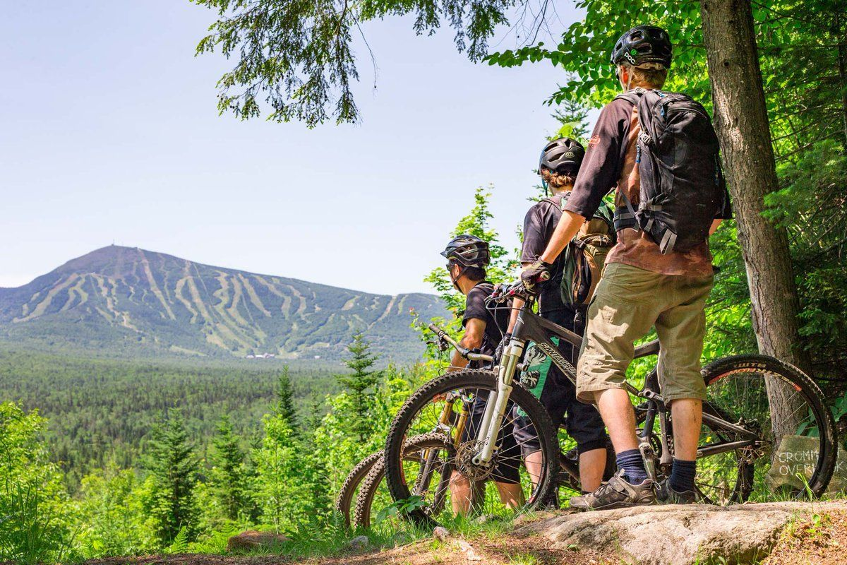 Xtremebiking Com Top Rated Gear For All Your Mountain Biking Needs