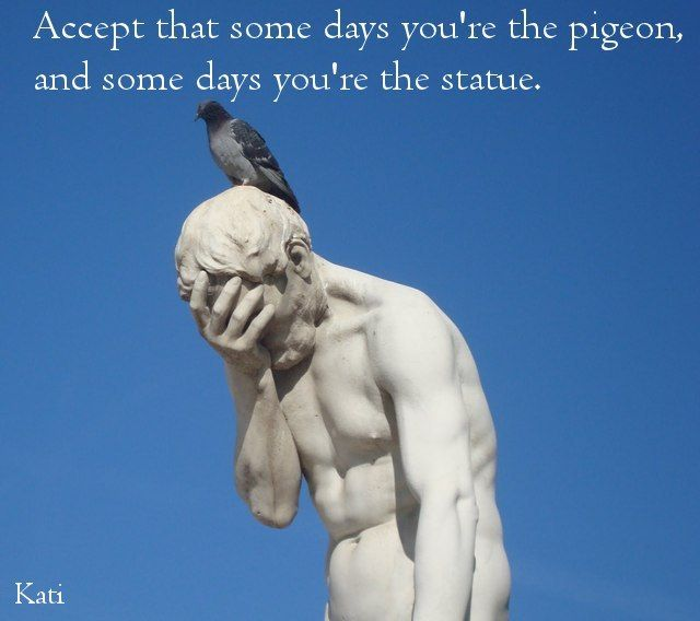 Some Days Youre The Pigeon Food For Thought Inspirational