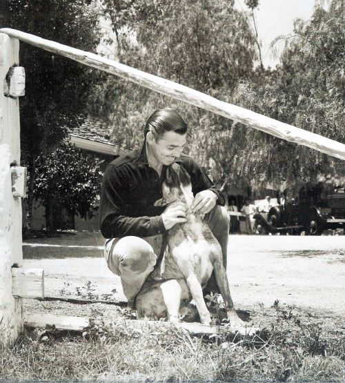 Clark Gable and his pal on his new twenty-acre... | ItsaGableThing