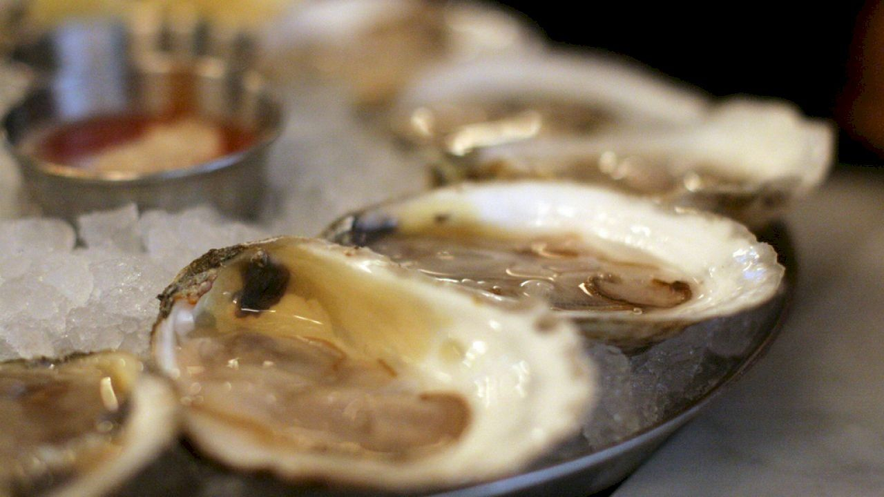 كيفية طبخ المحار Cooked Oysters Cooking Food