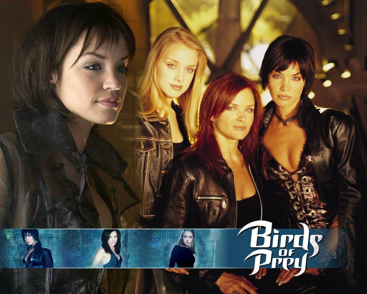 Birds Of Prey The Television Series Birds Of Prey Prey Tv Shows