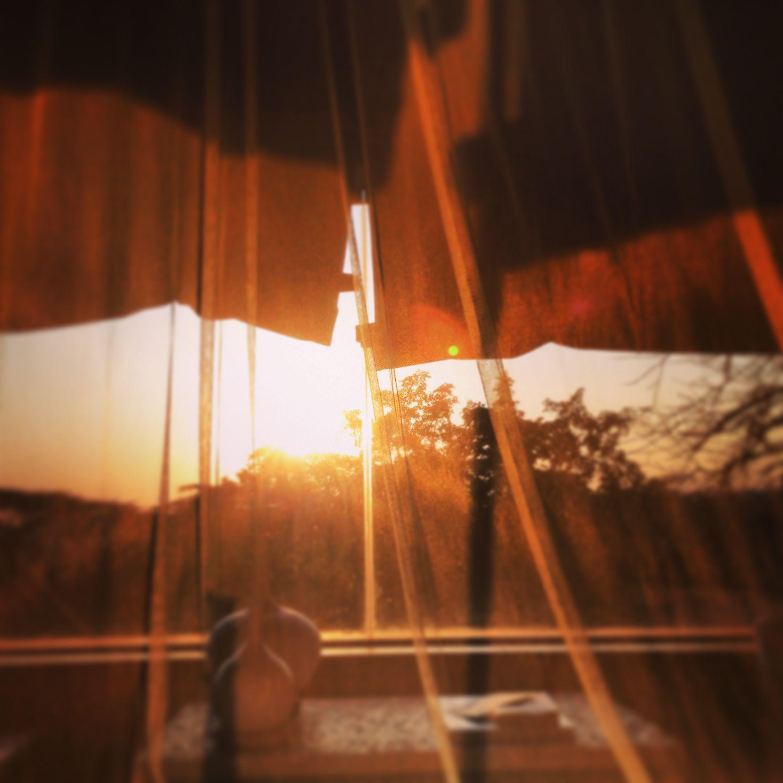 Sunrise in bed
