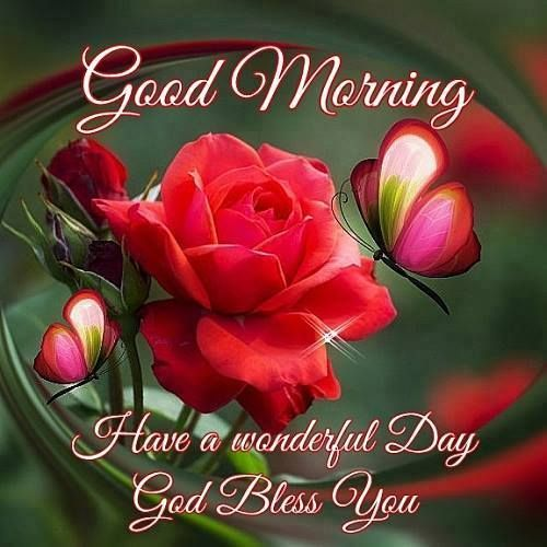 Wishing a very best morning ever nik smile when you read this wishing a very best morning ever nik smile when you read this spread that to others you are awesome and special you are capable to bless others with m4hsunfo