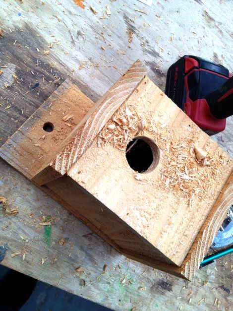 ana white | kids kit project: $1 modern birdhouse - diy projects