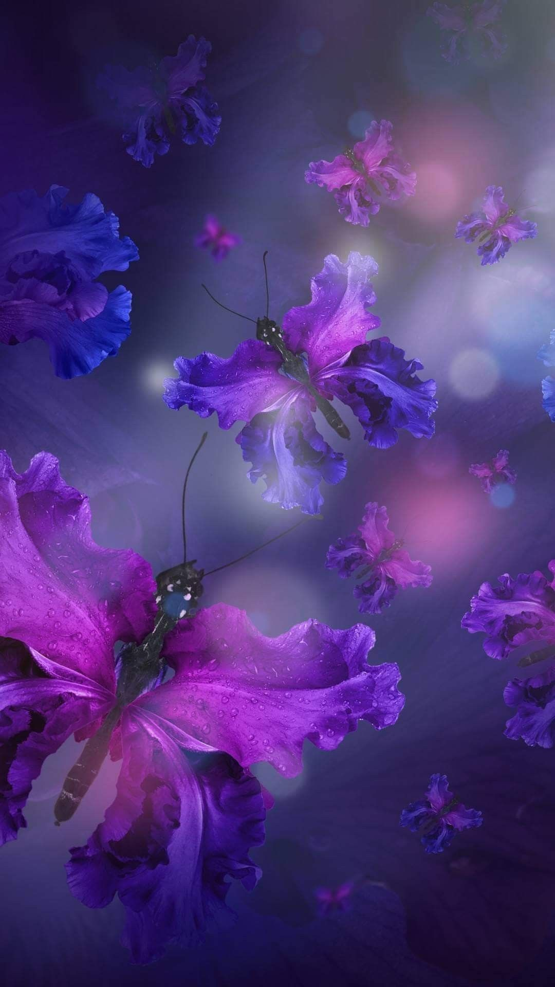 Pin by Rhonda Meister on My pretty pictures Butterfly