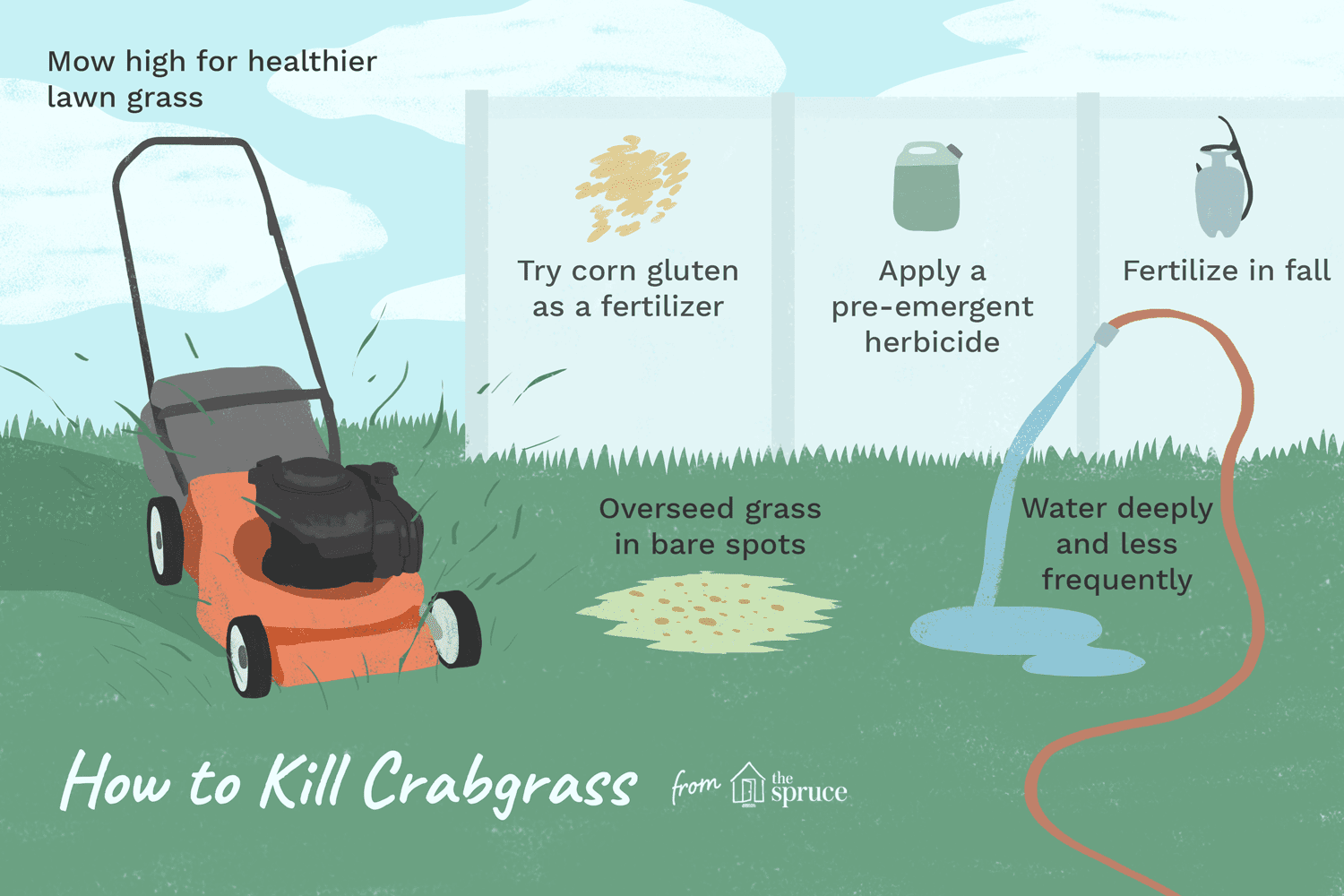 How To Get Rid Of Crabgr For Good Lawn Flowers