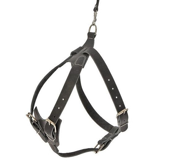 Leather Chest Protect Dog Harness Adjustable Tracking