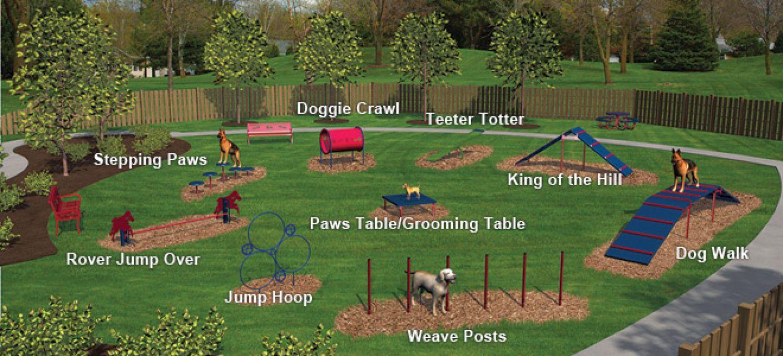Expert Dog Obstacle Course Dog Playground Dog Training Agility