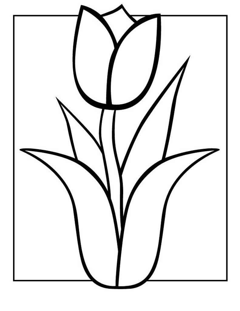 Раскраски Цветы в 2020 г | Рисунки для раскрашивания ...