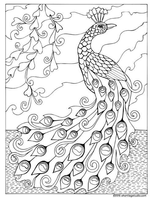 free printable peackoxk mosaic art coloring pages | Coloring Pages Gallery — Short Leg Studio