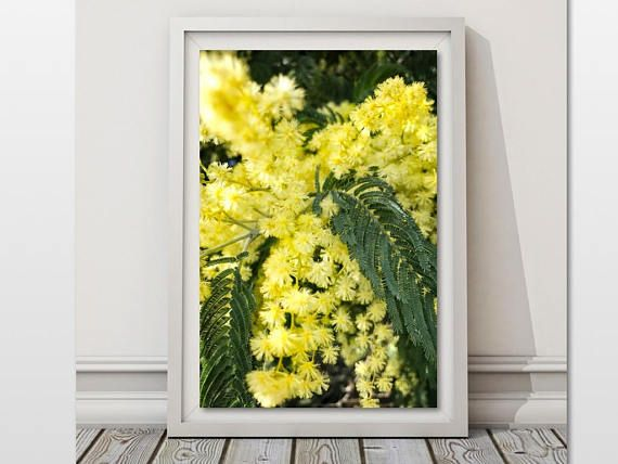 Yellow Flower Print Botanical Wall Art Floral Photo Poster Nature ...