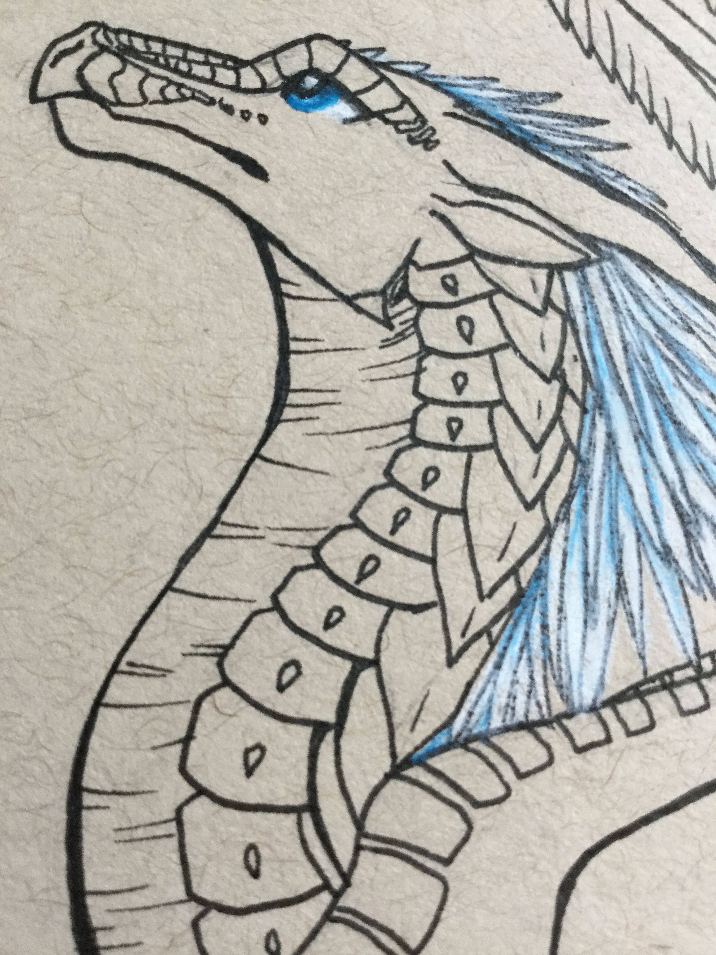 Whiteout Beginning To Color Art By Mj Wings Of Fire Dragons