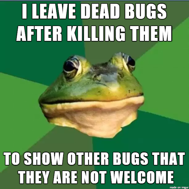 Mainly mosquitoes and spiders.