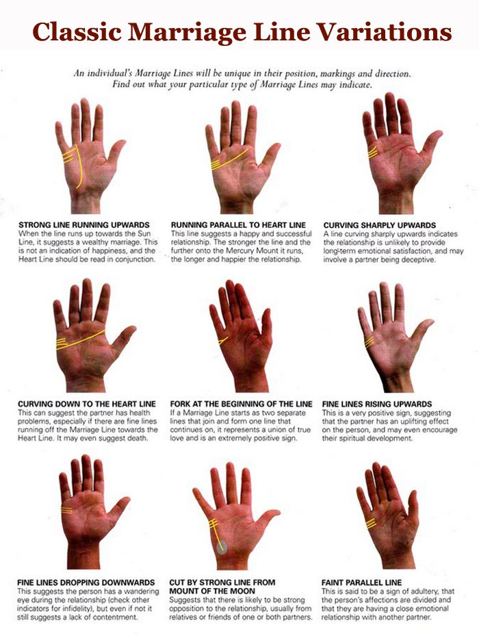 Analysing The Shape Of Your Palm Palm Reading Palmistry Reading