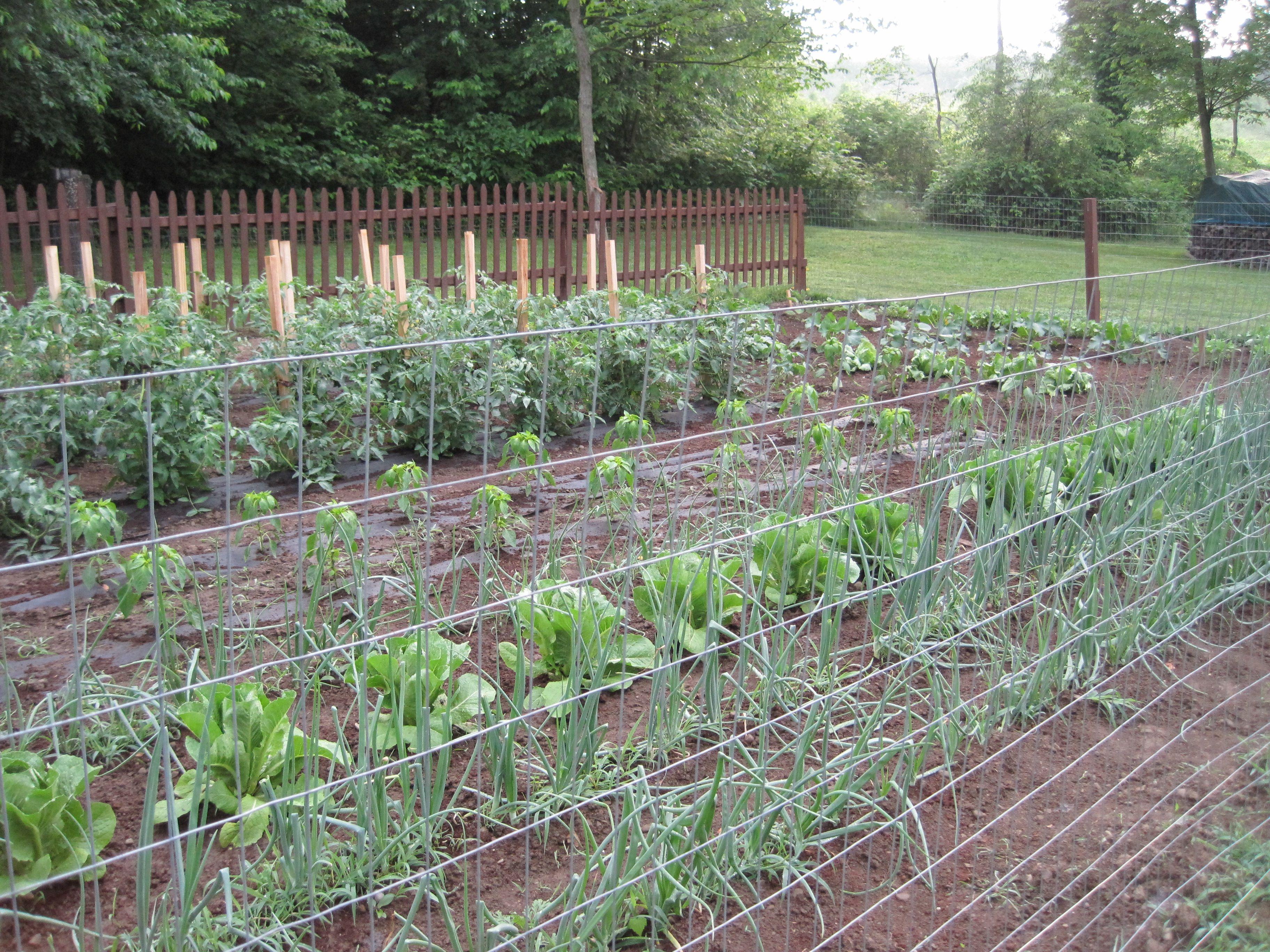 pinterest country gardens 2015 home design ideas