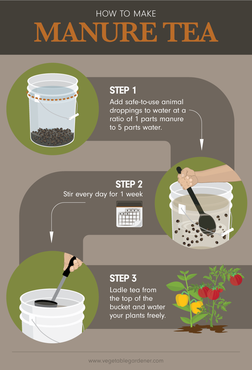 Making Manure Tea Using Animal Waste As Garden Fertilizer Manure Tea Organic Gardening Tips Organic Gardening Soil