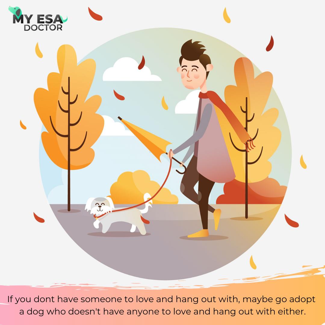 ESA Letter Online Emotional Support Animal Letter ESA