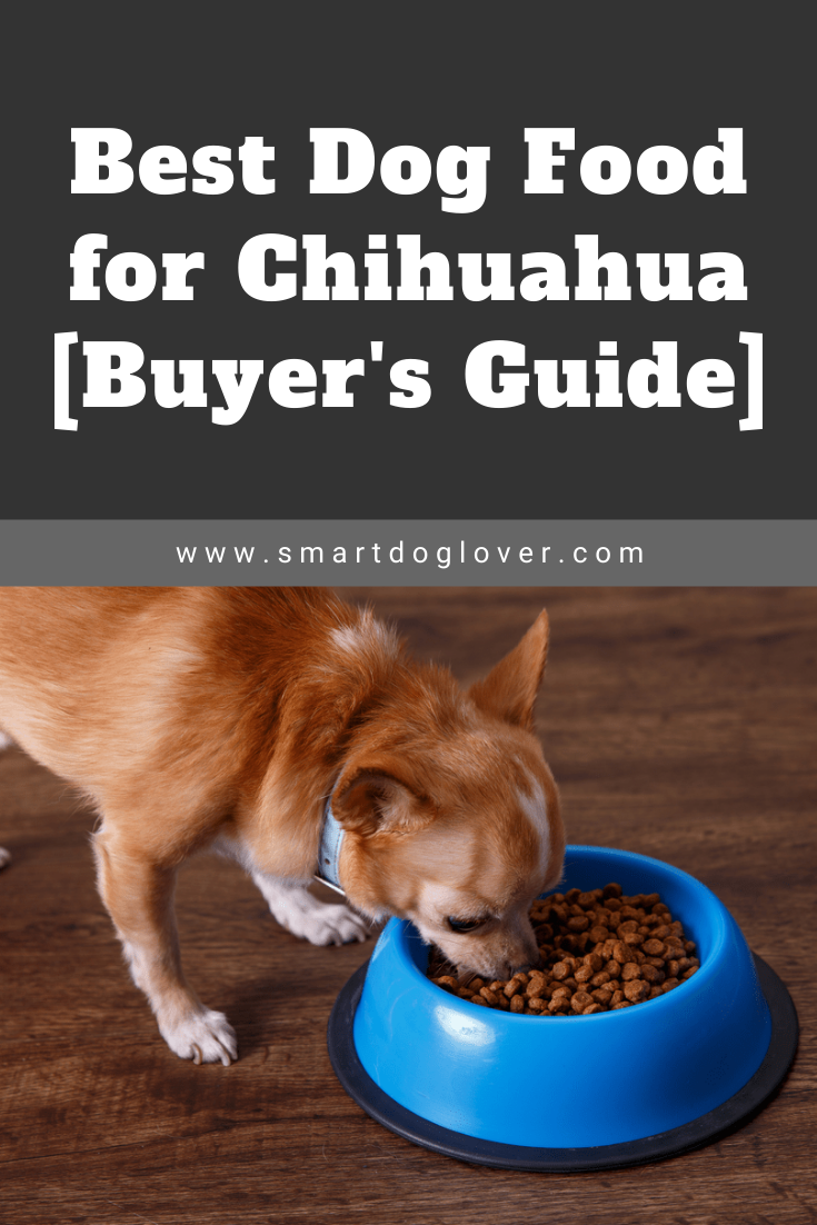 Best Dog Food For Chihuahua Buyer S Guide Dog Food Recipes Best Dog Food Best Dry Dog Food