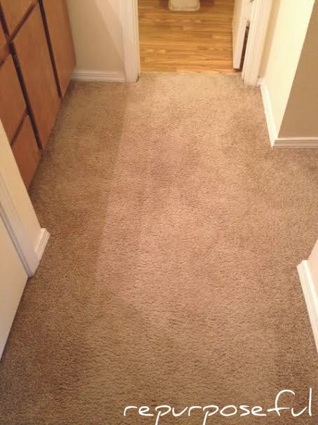 How To Get Bleach Out Of Your Carpets Bleach On Carpet Buying Carpet Diy Carpet