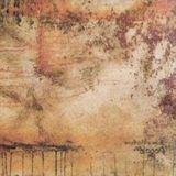 Alogon [LP] - Vinyl, 22091710