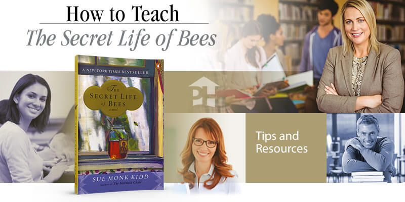 the secret life of bees synopsis